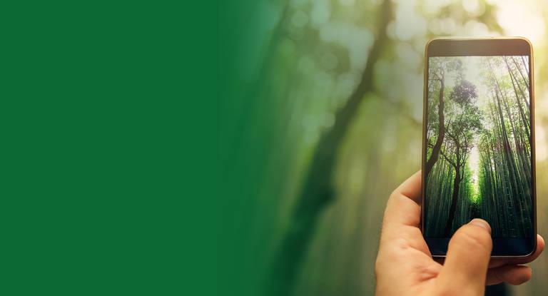 Grüner unterwegs mit unseren neuwertigen & günstigeren Handys