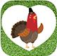 Gemüse-Gärtner App