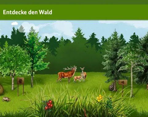 Die kleine Waldfibel – per App die Geheimnisse des Waldes entdecken