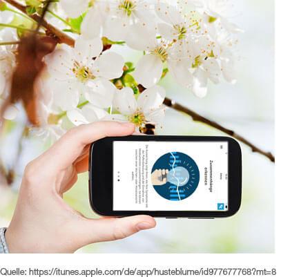 Pollenflug Informationen und Allergie-Selbsttest