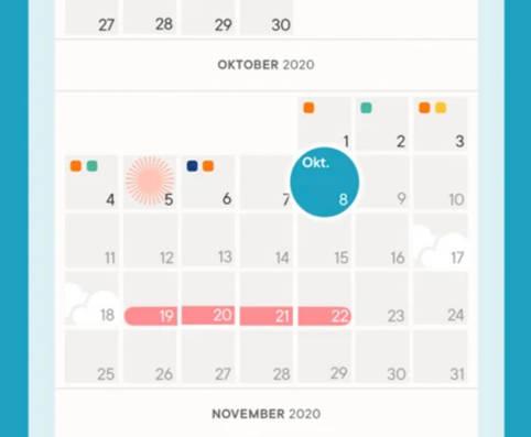 Clue: Zyklus App mit Eisprungkalender