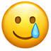 Smiley mit Freudentränen