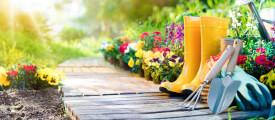 Blühende Gärten dank Smartphone
