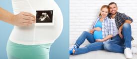 Schwangerschafts Apps im Test