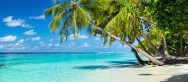Urlaubs-Apps im Test - Teil III